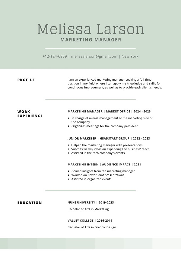 example updated resume format